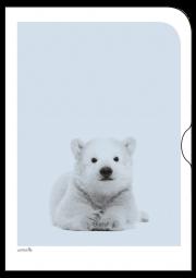 Schoene-Tiermotive-Eisbaer-O