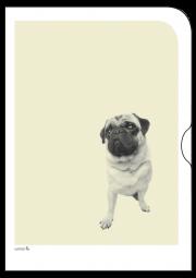 Schoene-Tiermotive-Mops-O