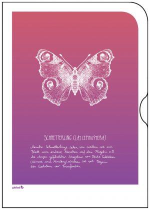 einzelmotiv_TI-1-STK-03-17_TI_Schmetterling